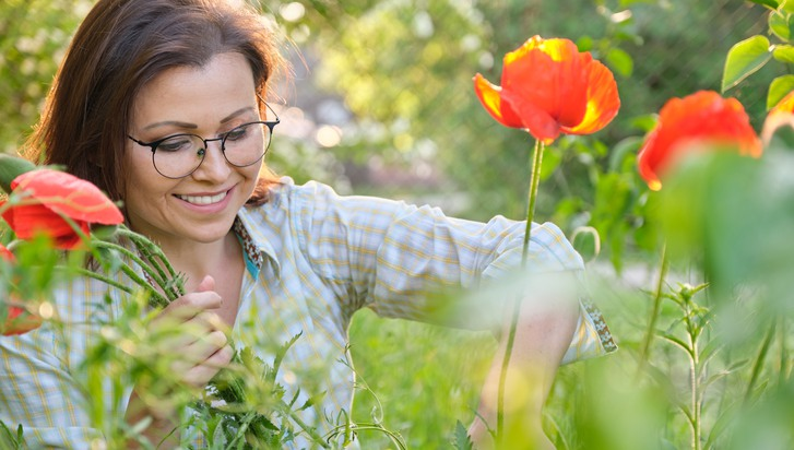 Beautiful middle-aged woman in nature in the garden cutting flowers red poppies